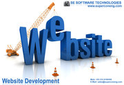 Web Development Services With Reasonable Price